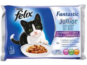 FELIX Fantastic Junior v želé 4x100g